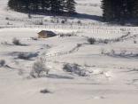 Зимна идилия