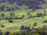 Английски пейзаж