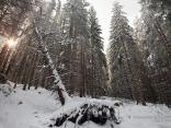 Зима на Витоша