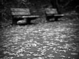 Есенни пейки