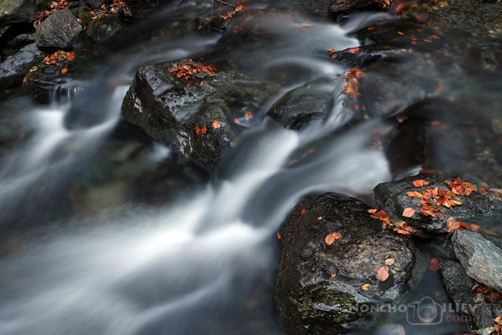 "Stara reka/""The old river"""