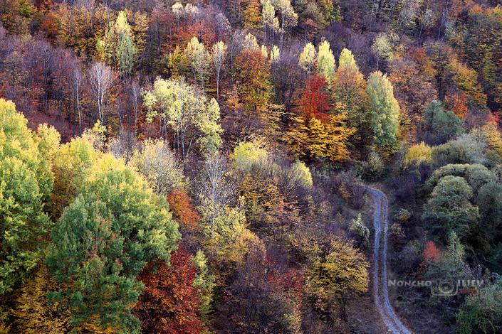 Есенни краски