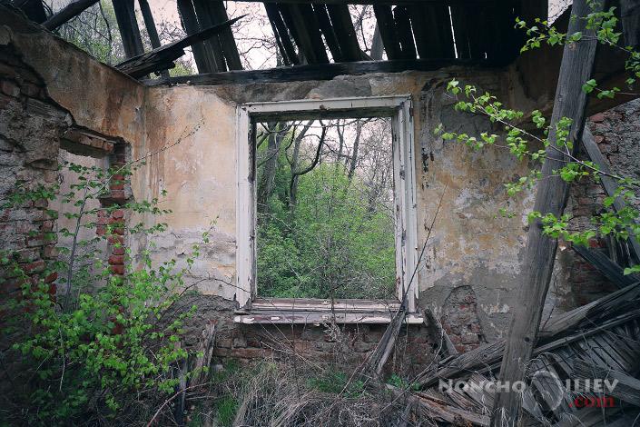 руини