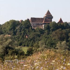 Viscri укрепена църква