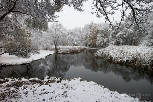 първи сняг 2014 софия