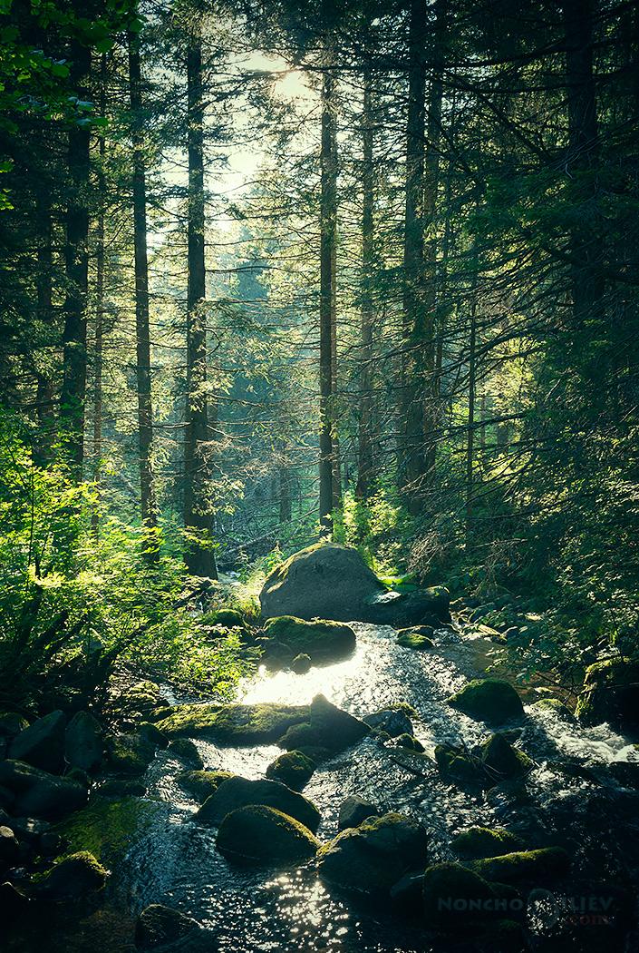 Витоша гора река светлина