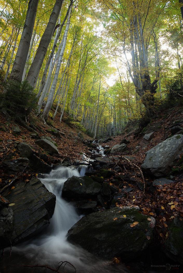златна есен в стара планина