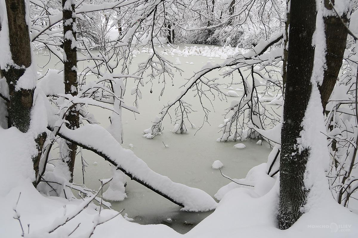 зима 2016 сняг езеро южен парк софия