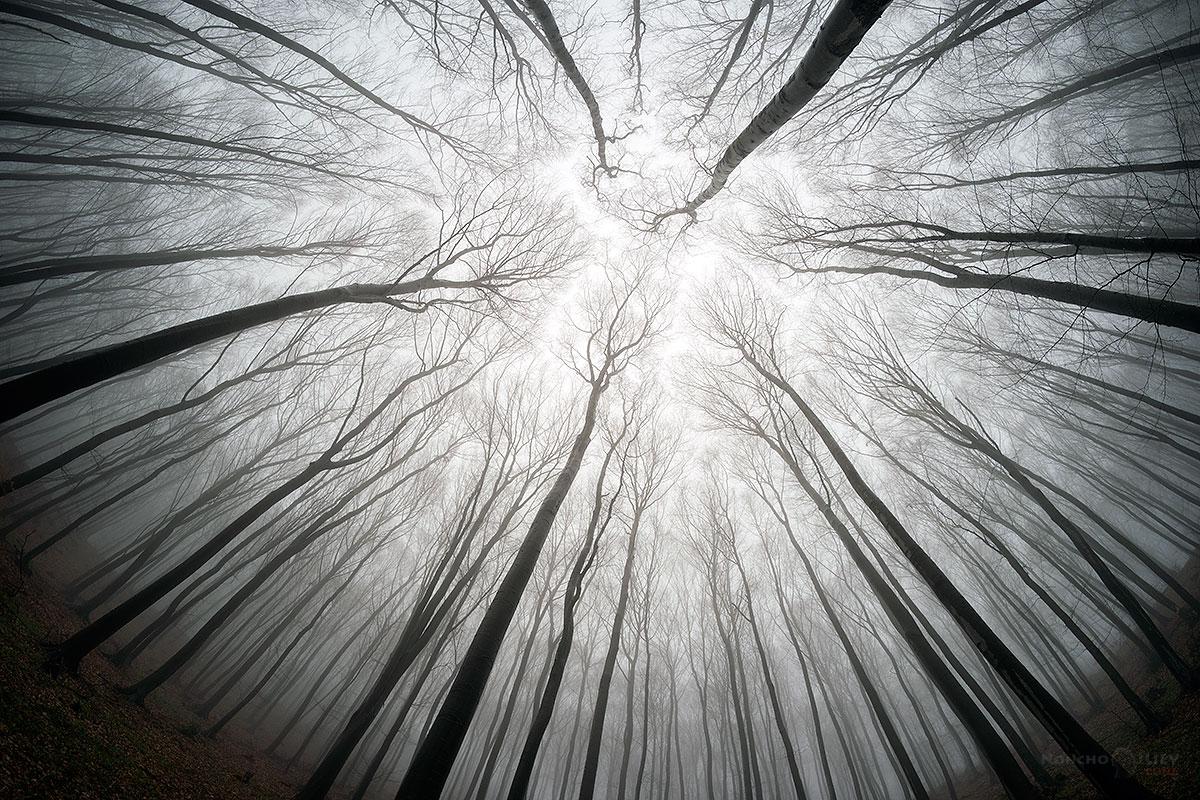 март есен мъгла