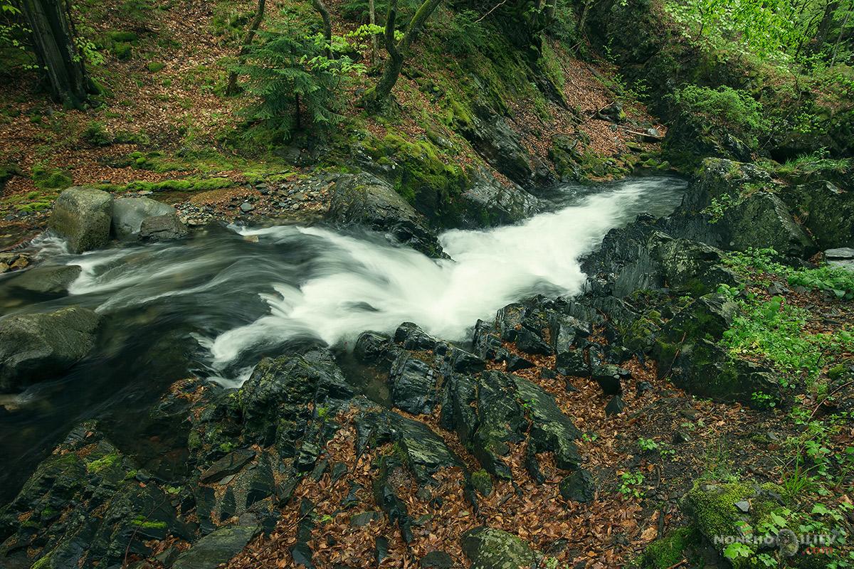 пролет дъжд стара река