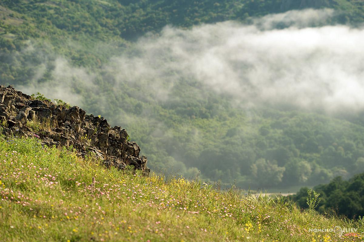 пейзаж с мъгла