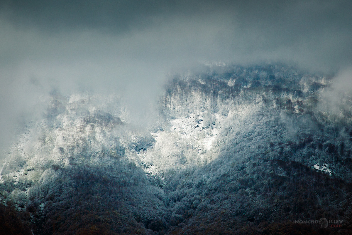 Снежна Витоша