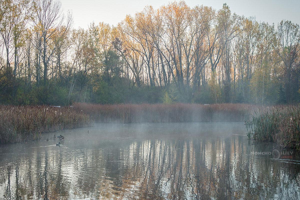 есен южен парк