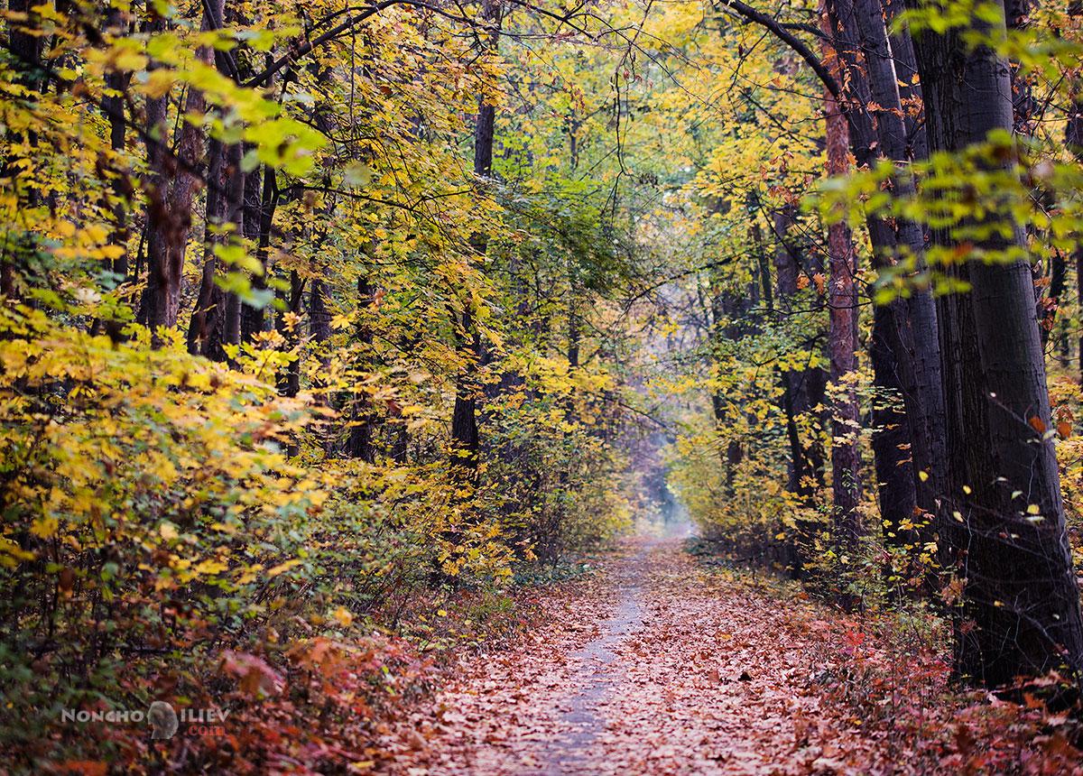 есен ловен парк