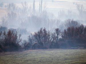 зима поле мъгла