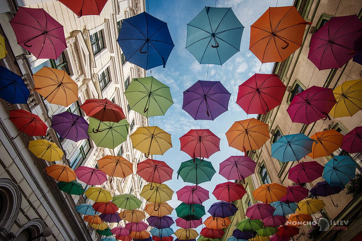 Тимишоара арт чадъри