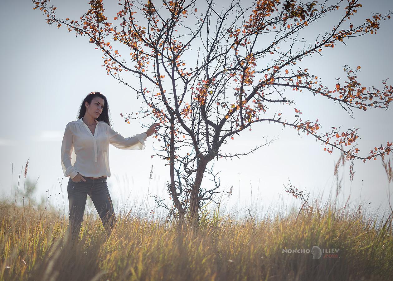 портрет контражур дърво модел
