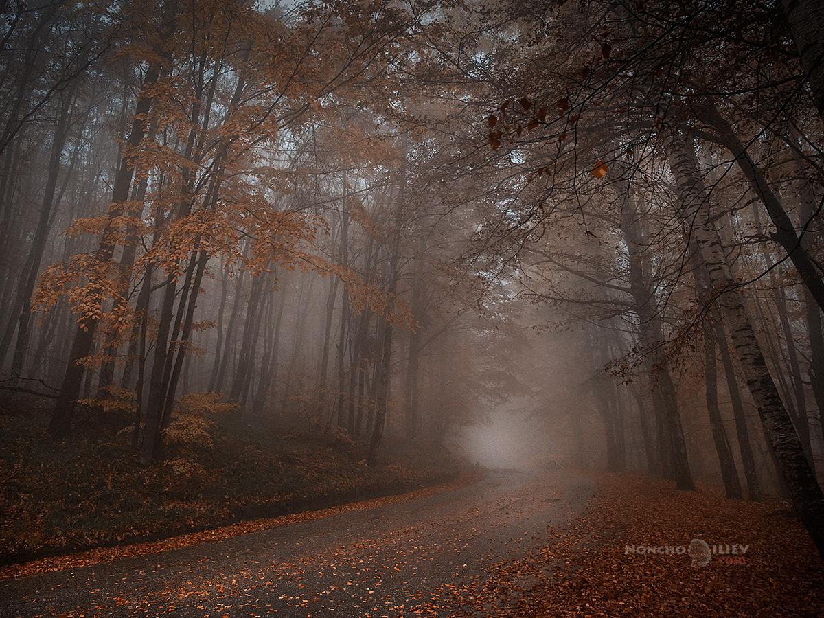 мъгла планина път есен 2018