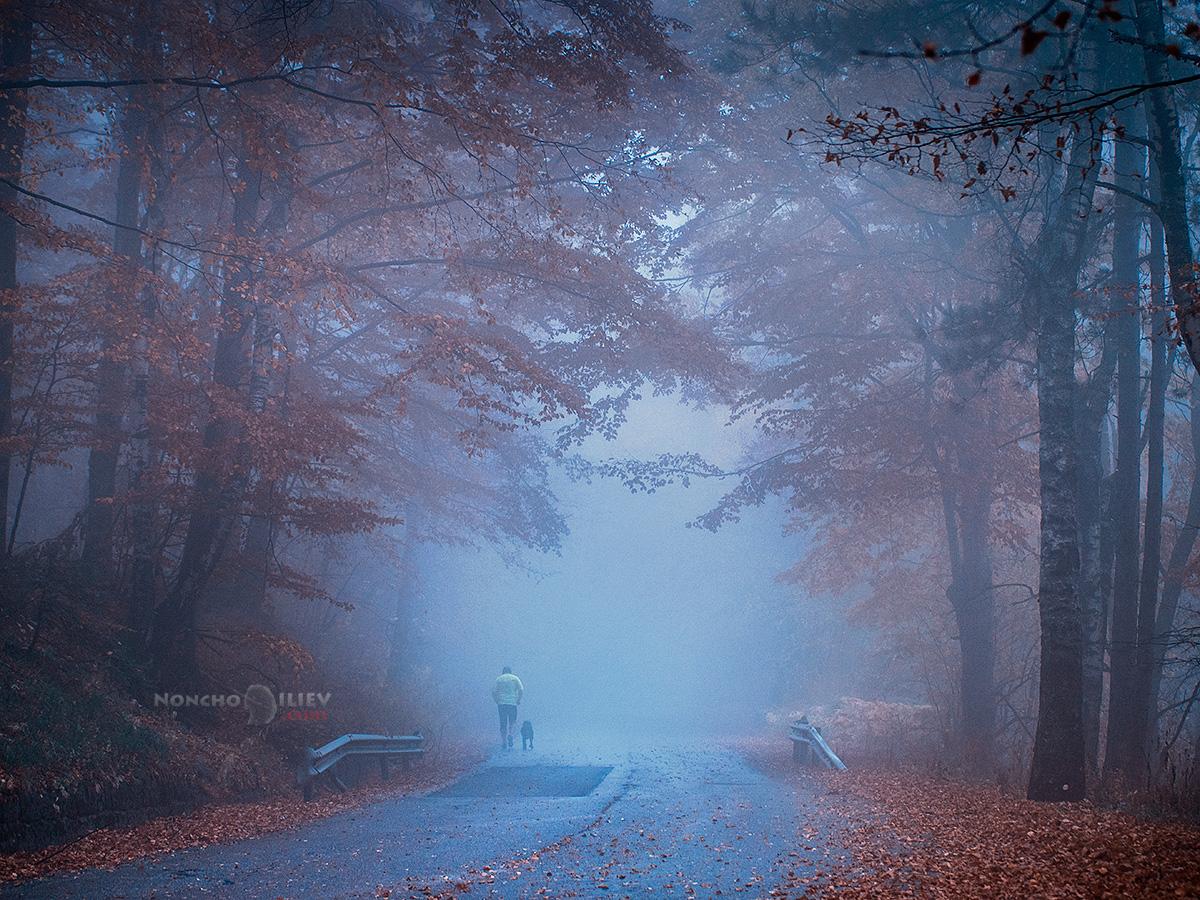 мъгла човек път