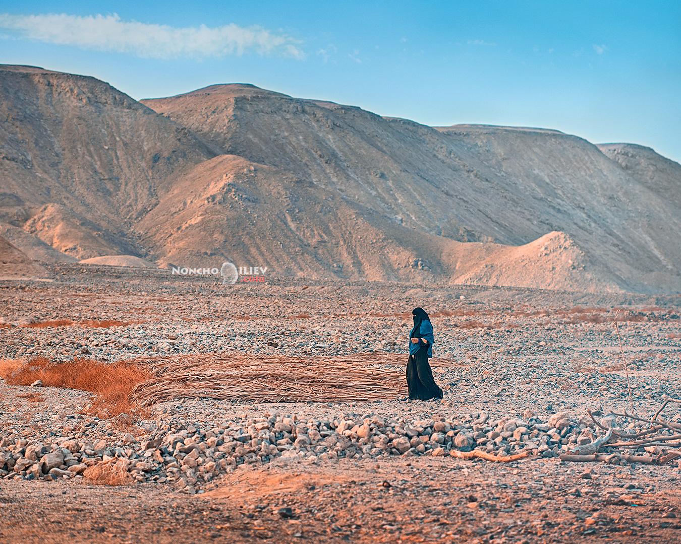 пустиня сянка shadow desert
