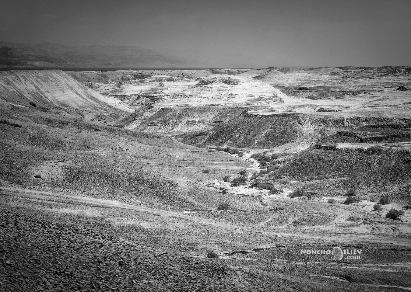 Пустинята покрай Мъртво море