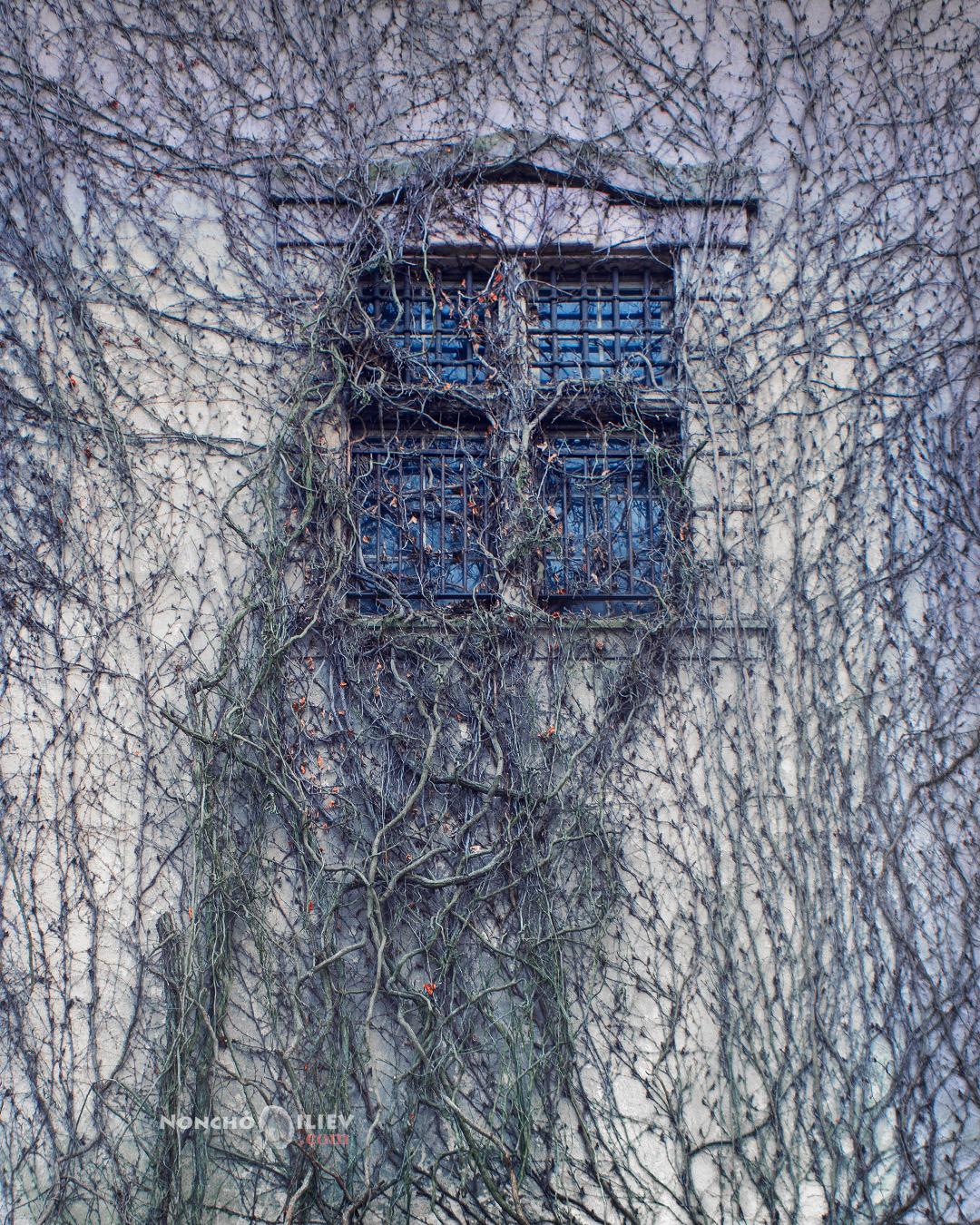 Баден-Баден прозорци